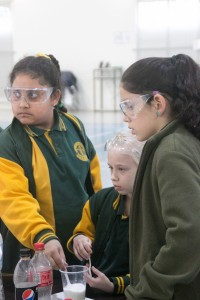 Science Challenge Day (2016)